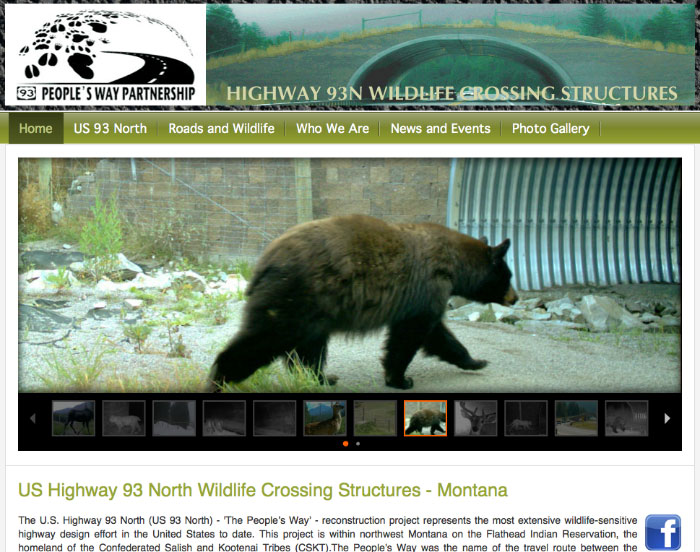 Peoples Way Wildlife Crossing Montana