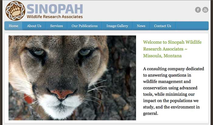 Sinopah Wildlife Research Associates - Missoula, Montana